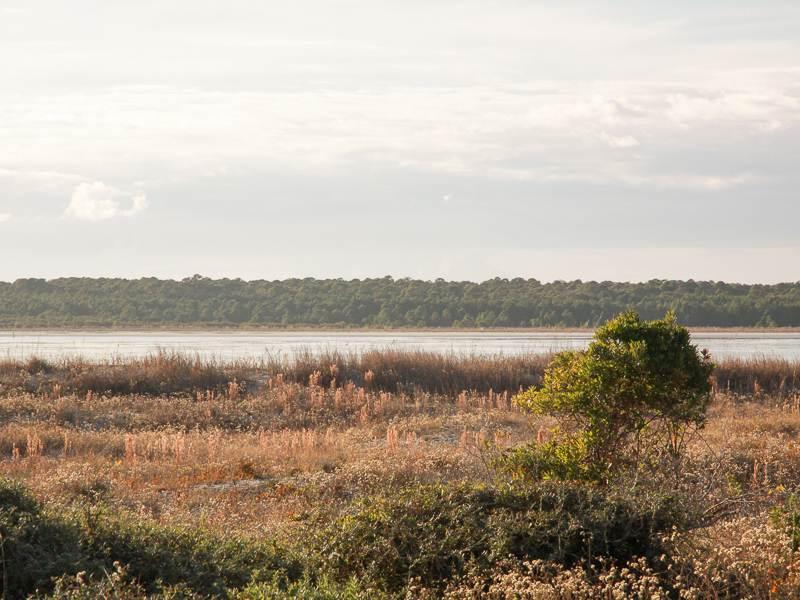 Pelican Watch 13101 - Image 1 - Seabrook Island - rentals