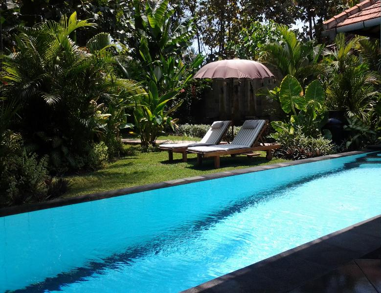 Villa Jati's pool and private garden - Private Garden Villa with pool - close to Lovina - Lovina - rentals