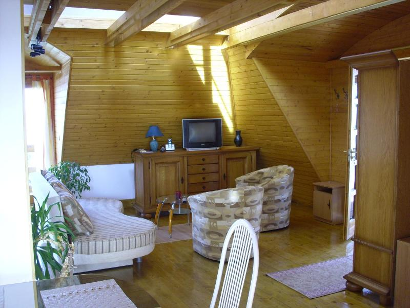 Separate built attic, complete with wood-paneled, - Image 1 - Eger - rentals