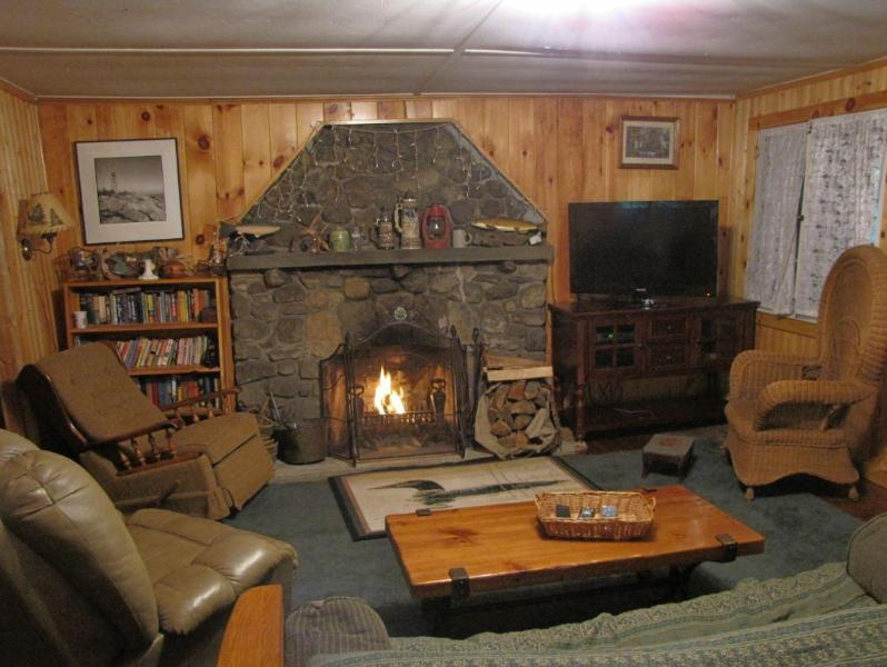 Living Room - Deep Woods Cabin - Hot Tub! - Wilmington - rentals