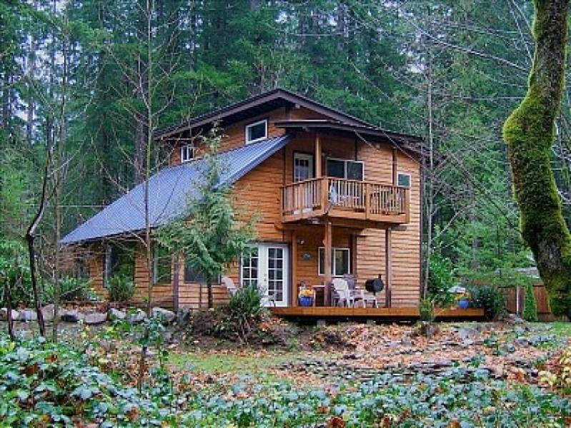 Kiwi's Creekside Cabin - Image 1 - Welches - rentals