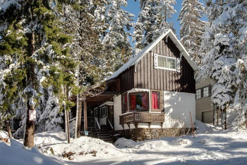 3-bedroom ski getaway with private hot tub! - Image 1 - Government Camp - rentals
