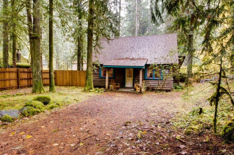 Old Smokey Cabin - Image 1 - Rhododendron - rentals