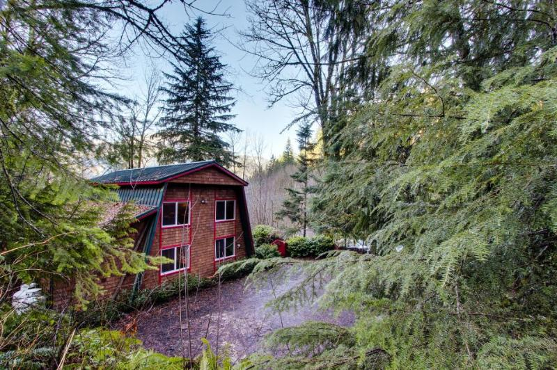 Red Stone Cabin - Image 1 - Welches - rentals