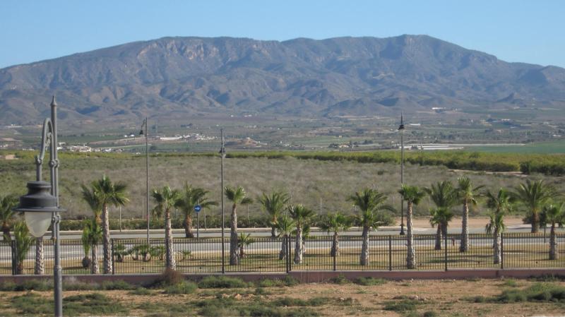 Los Naranjos' Home - Image 1 - Alhama de Murcia - rentals