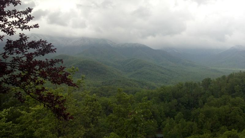 view from the deck - Humming Bear Cabins stay above the clouds. - Cosby - rentals