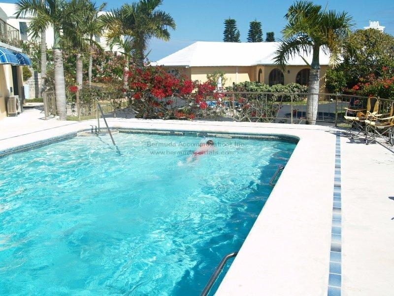 C44. Poolside apartment with Patio and water views - Image 1 - Southampton - rentals