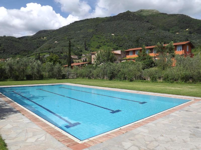house with private garden - Image 1 - Camaiore - rentals