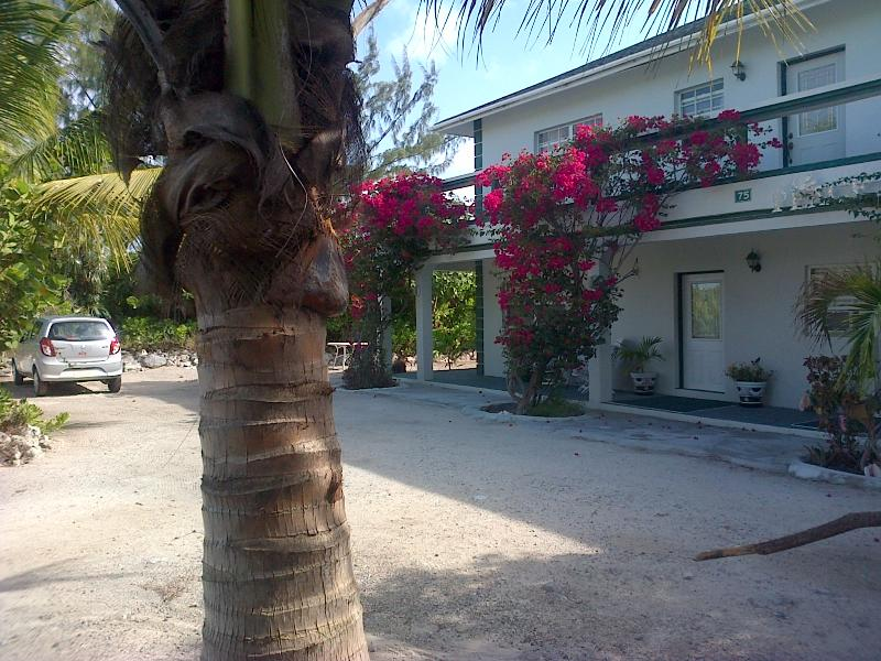Parking lot - Silver Palm Beach House Turks and Caicos - Providenciales - rentals