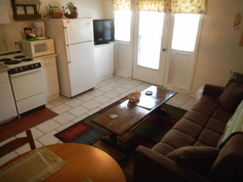 SURFSIDE ESCAPE - Image 1 - Tybee Island - rentals