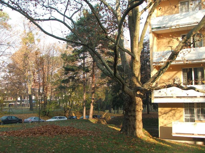 View from apartment - Apartment24-Schoenbrunn 63qm_free parking_WiFi - Vienna - rentals