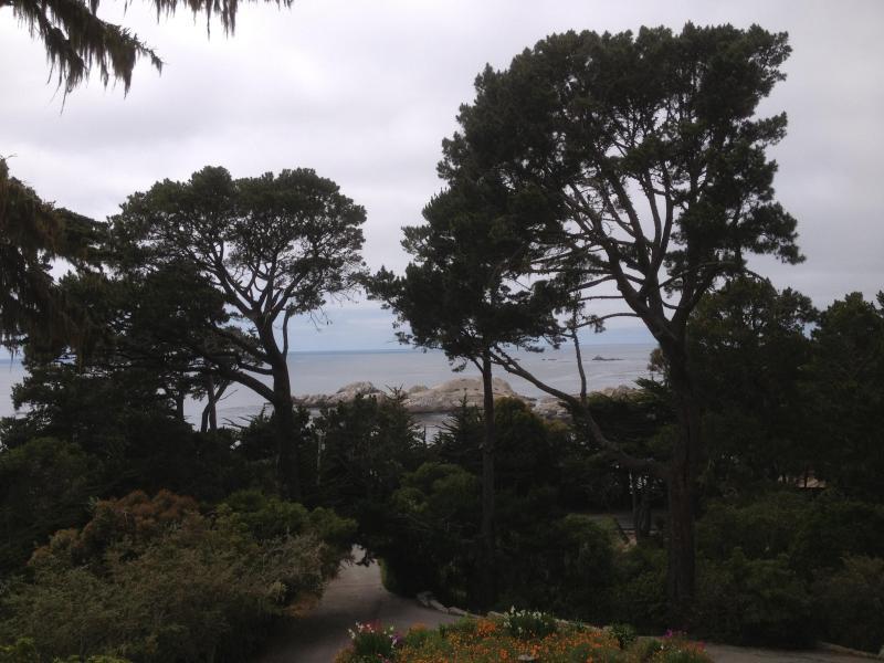 Dramatic Ocean Views - Preeminent Regeneration!! - Image 1 - Carmel - rentals