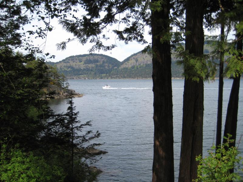 View from front yard - - $1000 / 2br - 1200ft² - Southern Gulf Islands (South Pender) - Pender Island - rentals