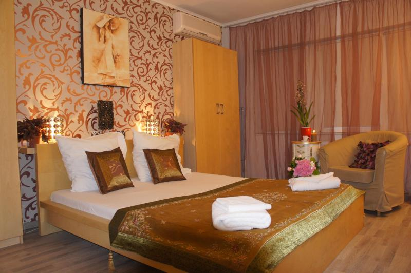 Cosy studio, downtown Bucharest, Royale Palace view - Image 1 - Bucharest - rentals