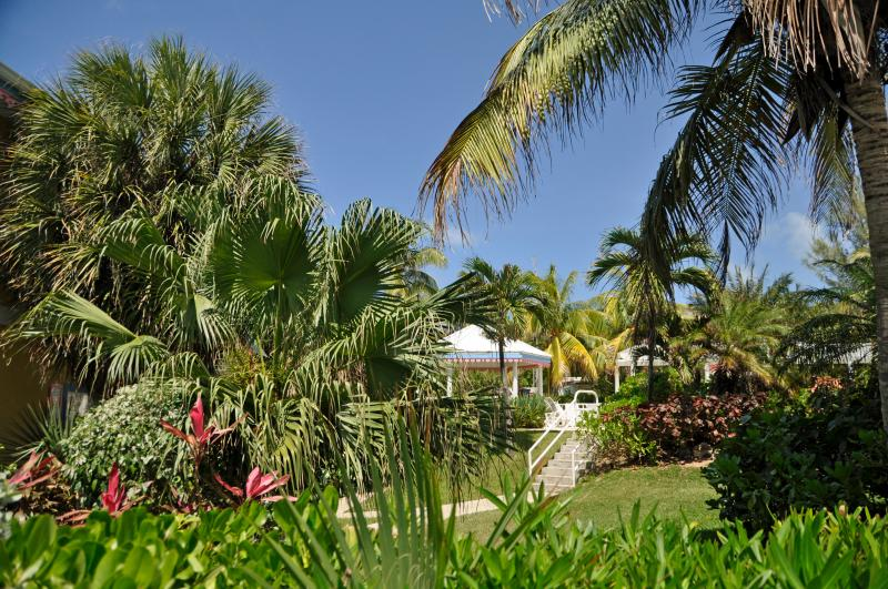 The beautiful gardens - CoCoCondo - Your Caribbean Home away from Home - West Bay - rentals