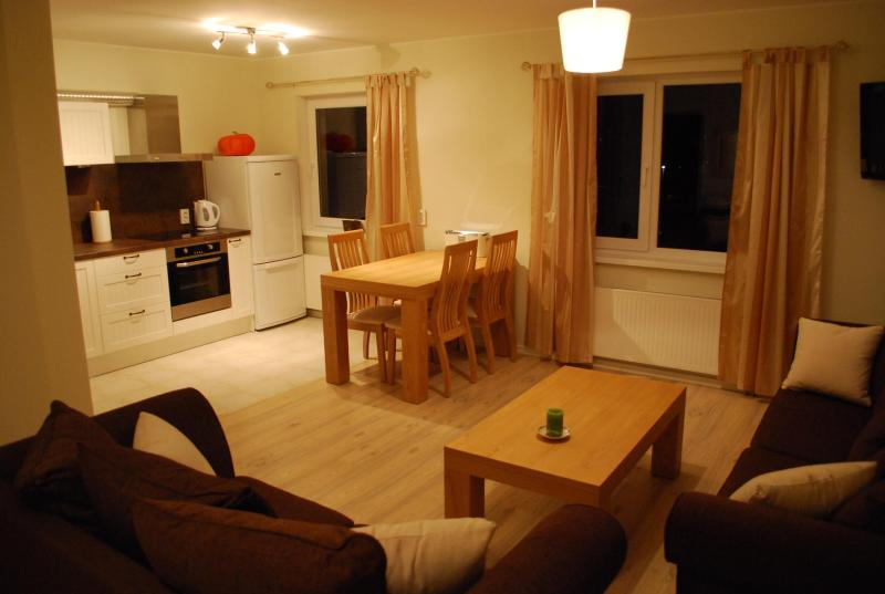 Sleep In Guest Apartment - Sleep In Guest Apartment - Paide - rentals