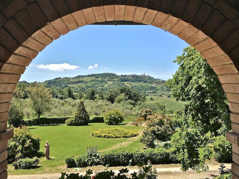 view from the villa - Tuscany, Siena, Villa Beata  for 24 people, pool and jacuzzi, olives groove - Radicondoli - rentals