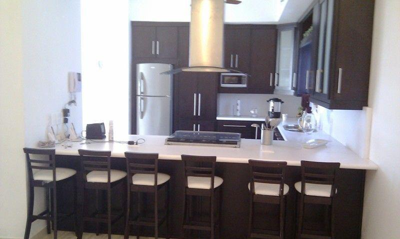 For Rent Luxurious House - Image 1 - San Carlos - rentals