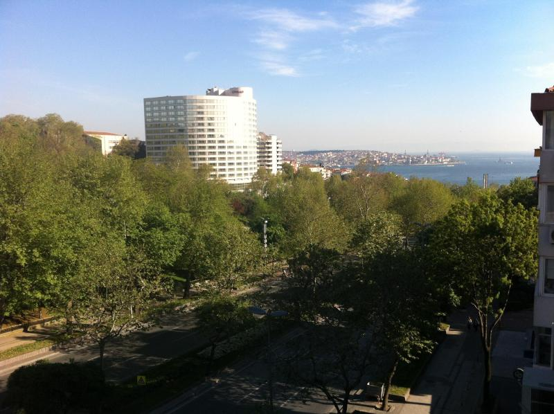 NEW HOUSE ON CENTRAL AVENUE @ bosphorus - Image 1 - Istanbul - rentals