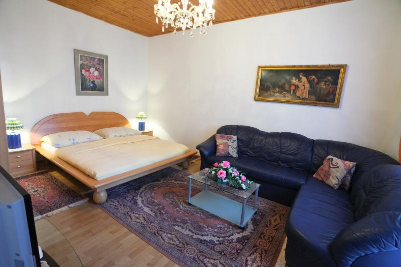 Cosy Studio Apt Near Belvedere and Center, Apt #5 - Image 1 - Vienna - rentals