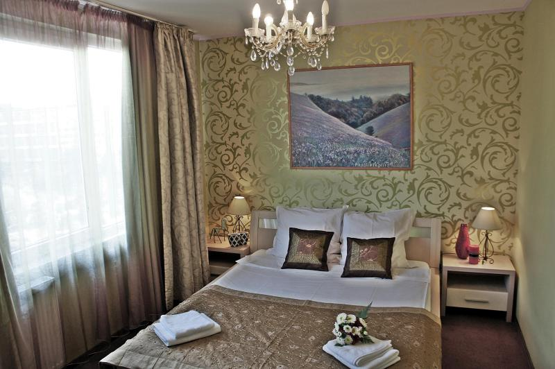 Luxury 1 bedroom -Royal Palace view - Image 1 - Bucharest - rentals