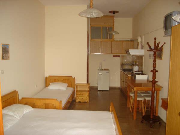 Studio 2-3 persons  ( Villa Xenos ) - Image 1 - Kalamaki - rentals