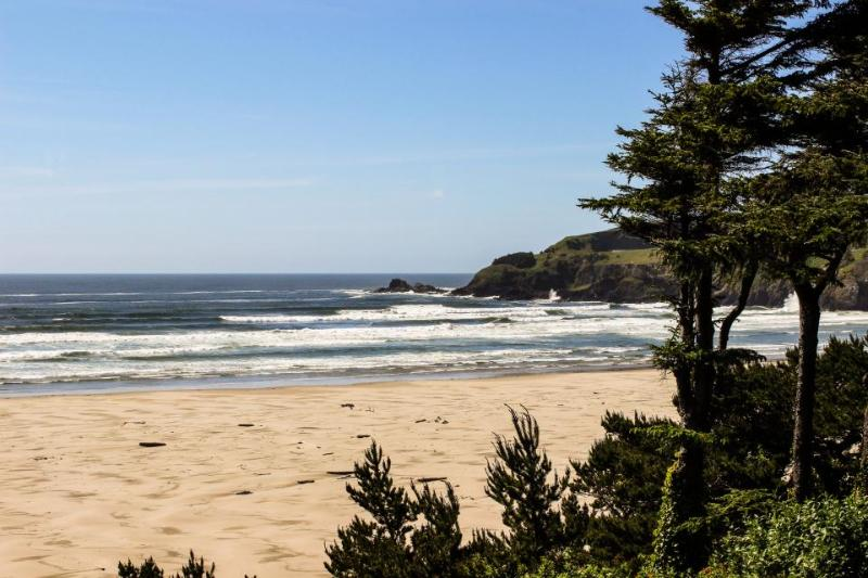 Agate Beach Oceanfront Suite A - Image 1 - Newport - rentals