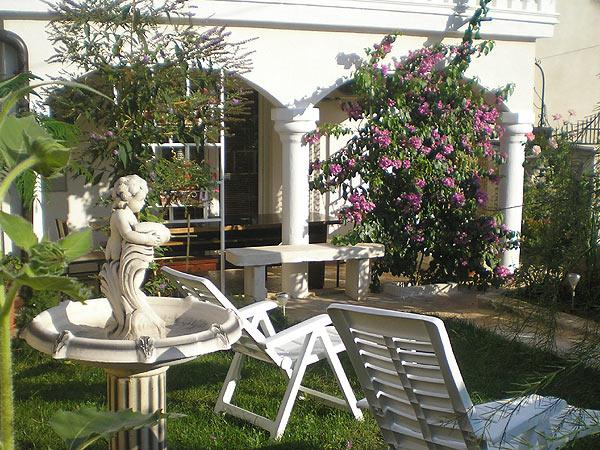 Garden - House for relaxing vacations - Pula - rentals