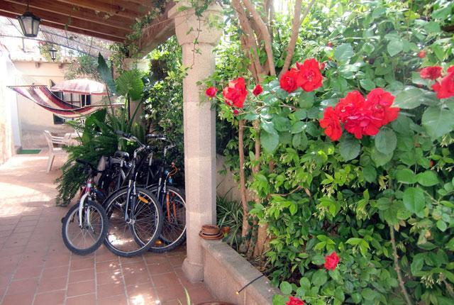 Terraza exterior y entrada al apartamento. - Ground floor in Palma de Mallorca - Palma de Mallorca - rentals