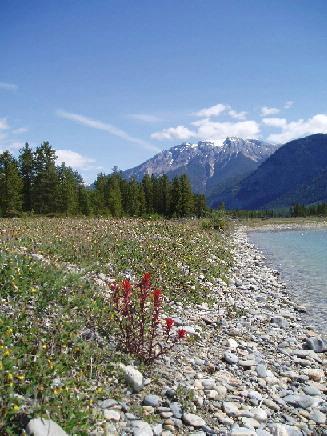 Blaeberry River - Rocky Mountain Cabins - Golden - rentals