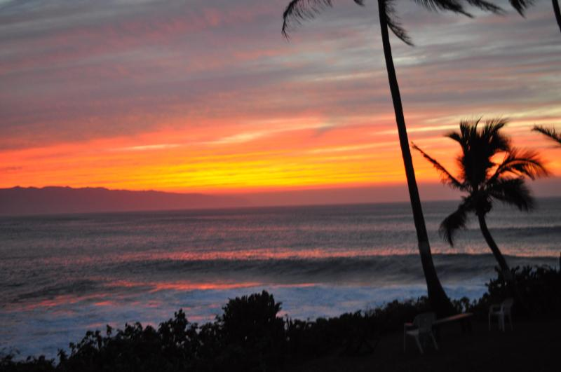 Sunset Paradise - SUZYS TROPICAL RETREAT STAY 6 NT & GET THE 7TH FRE - Hilo - rentals
