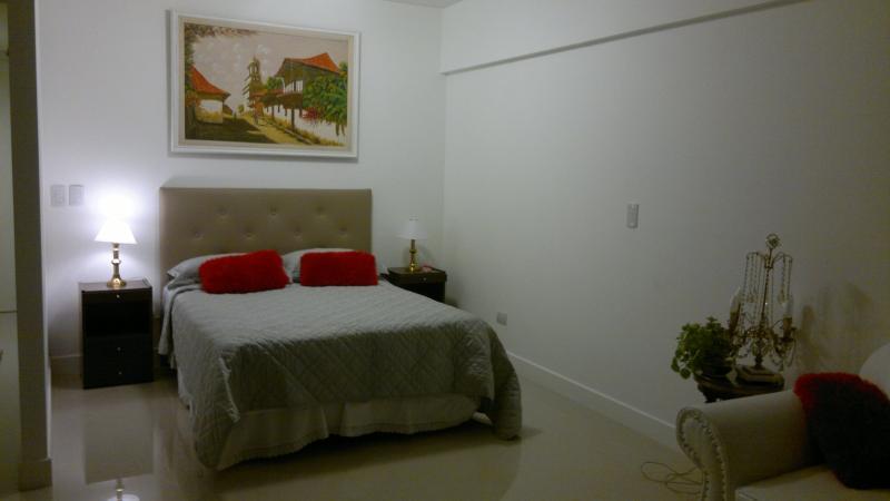 Beautiful Studio in Puerto Madero - Image 1 - Ciudad Evita - rentals