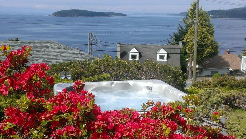 View from the hot tub! - Blue Waters Cottage - Hot Tub, Million $ View! - Sechelt - rentals
