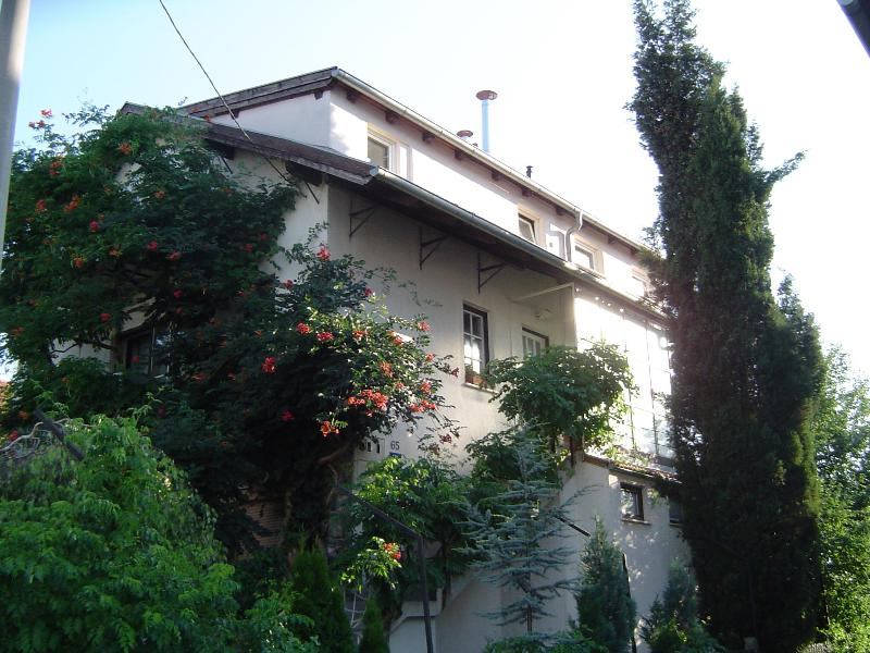 Outside house overview - Apartments Kahlina Zagreb - Zagreb - rentals