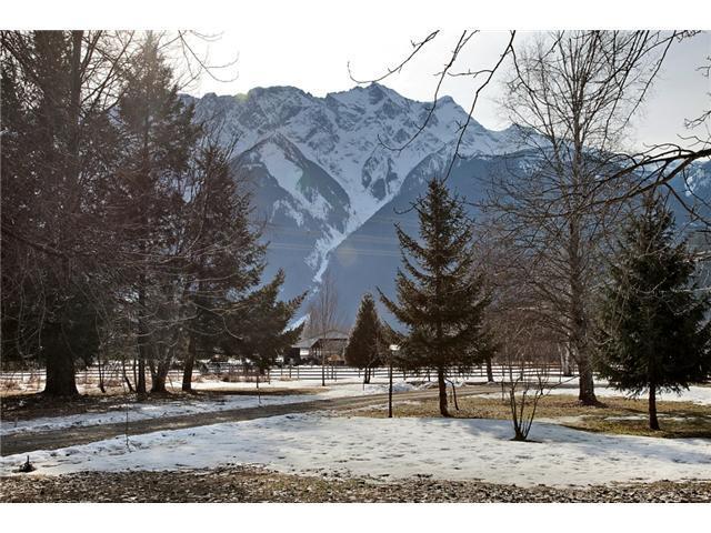 view from deck - Ski Estate3 bdrm/ 3 bath north of Whistler, BC - Pemberton - rentals