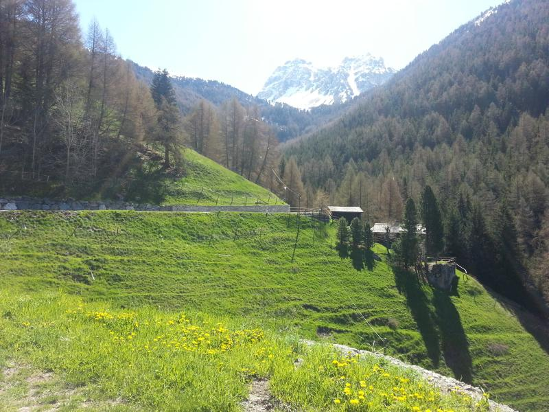 view from the chalet - a lovely nest for small groups in the swiss alps - Saint-Luc - rentals