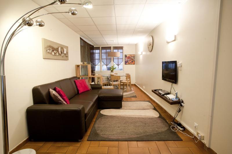 Living Room - Notre Dame Vacation Rental at Bievre - Paris - rentals
