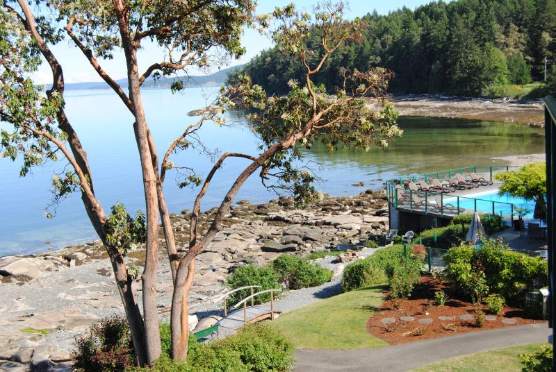 View from your large deck - Affordable Oceanfront Beauty. Luxury Awaits You! - Nanaimo - rentals