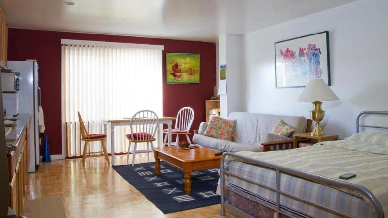 Living room / studio - Large studio apt near Golden Gate Park and Beaches - San Francisco - rentals