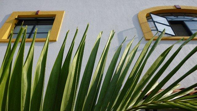 Bed and Breakfast Casa Colibris - Image 1 - Guadalajara - rentals