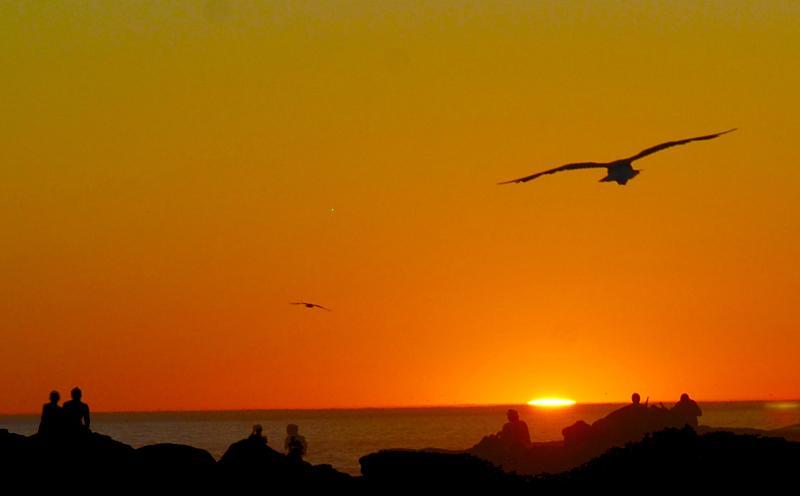 SunsetCape - Sleep @ Ocean View Table Mountain - Gordon's Bay - rentals