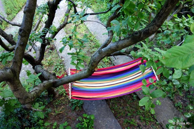 Hammock in the garden for ultimate relaxation - Sirma's House in luscious gardens near center, free WIFI - Skopje - rentals