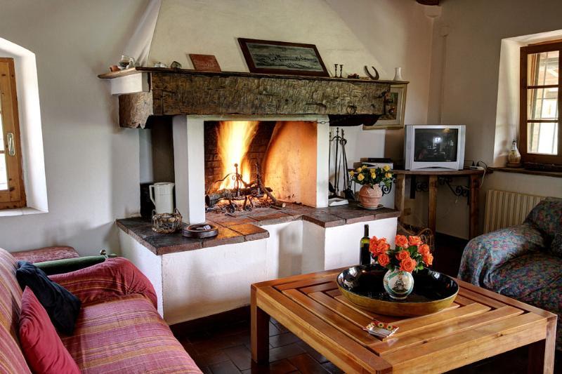 Apartment Lisa - Farmhouse Molinuzzo - Florence - Image 1 - Barberino Val d'Elsa - rentals