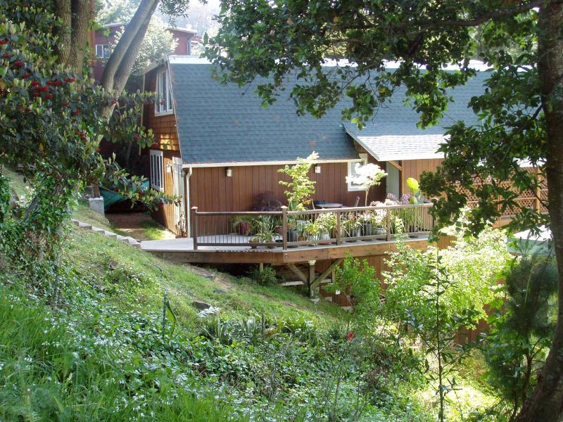 Beautiful hillside environment, spacious comfy living, hike to 2 beaches and ridge for sunset. - 3b/2b Hs, Vus, 10 min 2 SF,  Hike 2 2 beachs, Spac - Mill Valley - rentals