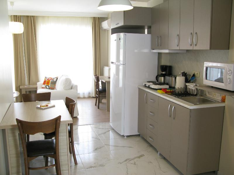 Cozy 2+1  Fully Equipped Apartment! - Image 1 - Istanbul - rentals