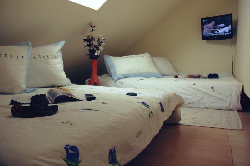 Apartment for 4-6 people in modern style - Image 1 - Kranjska Gora - rentals