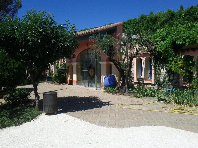 Patio Villa in Dieulefit (Drome Provencale) - Image 1 - Dieulefit - rentals