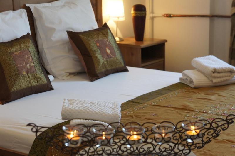 Beautifull 2 bedrooms, downtown - Calea Victoriei - Image 1 - Romania - rentals
