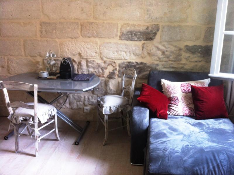 Beautiful Studio in Avignon Center, Pet-Friendly and Air Conditioned - Image 1 - Avignon - rentals
