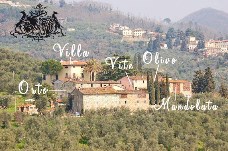 View of the farm - Fattoria di Fubbiano - L'Orto - Lucca - rentals